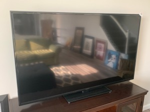Insignia flat panel television