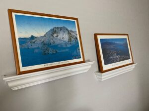 Pair of framed nature pictures